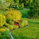 Jak przygotować sprzęt ogrodowy po przerwie zimowej